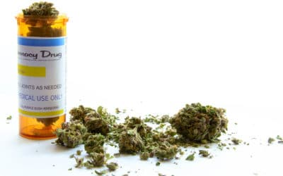 Medical Benefits of Cannabis Are Worth Exploring